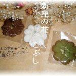 埼玉発「地域で頑張る元気な商店」にトロワフレールが掲載されました。