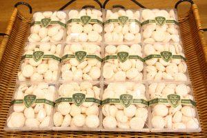 ココナッツクッキーボックス¥540